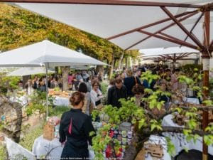 Marché-des-Producteurs-8-Droits-Nicolas-Claris-low-res-300x225 Le Saint James Hotel announces final Producers' Market of 2017