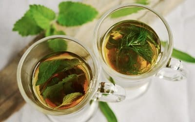 herbal-tea-1410565_960_720-400x250 Blog