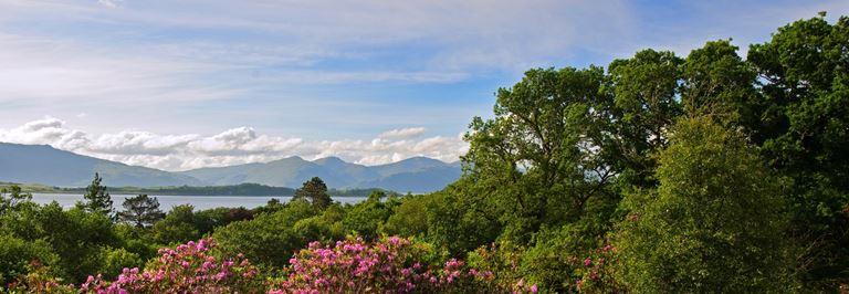 IOE3 Decadent Spa Staycations on the Isle of Eriska